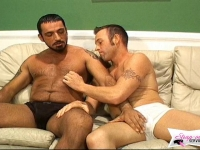 Two men and the bitch are fucking each other in turn